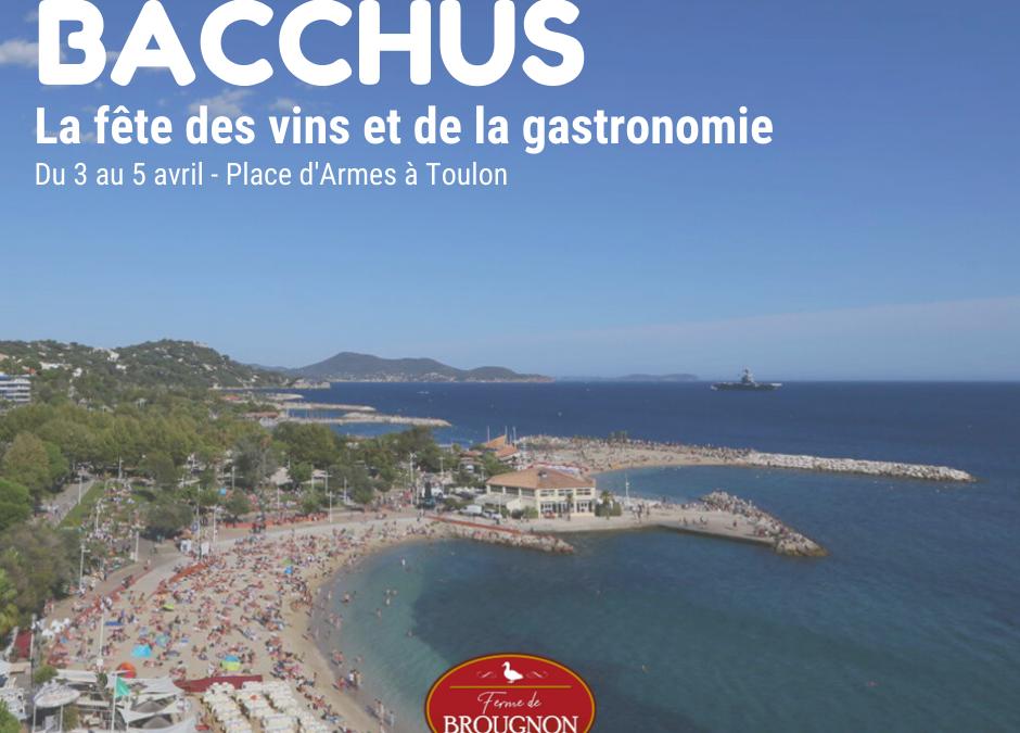 Venez nous rendre visite à Toulon les 3, 4 et 5 avril